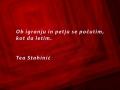 04_Misel_Stahinic