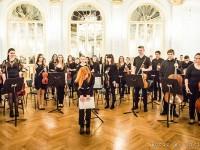 godalni orkester