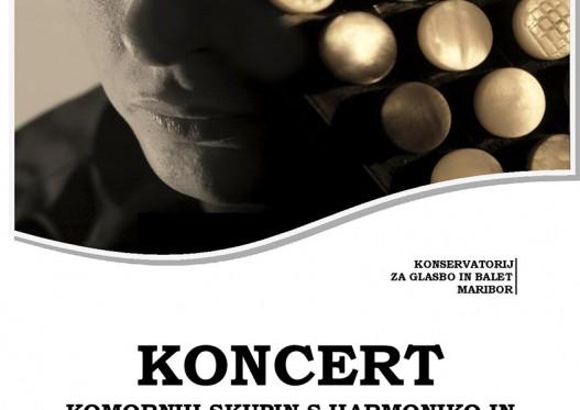 Koncert komornih skupin s harmoniko